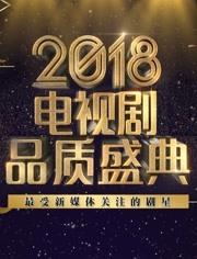 2018年電視劇品質盛典