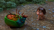 宝蓝抓到了一只黑乎乎的大虫子,原来这是一只独角仙啊
