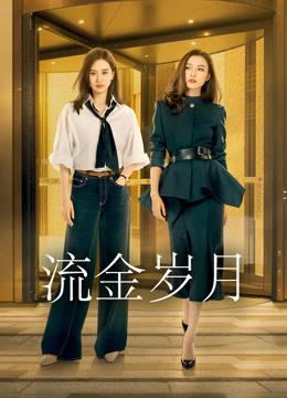 流金岁月DVD版