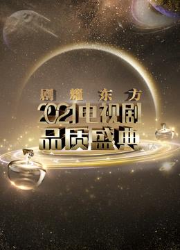 2021电视剧品质盛典