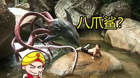 笑尿了!八爪鲨鱼它来了