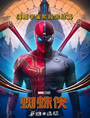 蜘蛛侠:英雄远征[普通话]海报剧照